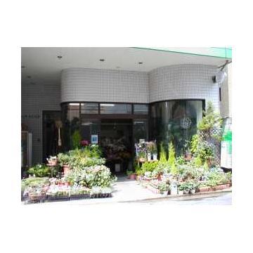 新潟市のペットショップ | 店舗の口コミ・評判 [エ …
