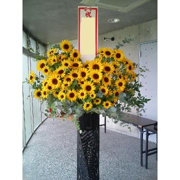 <フジテレビフラワーネット> ヒマワリのスタンド花