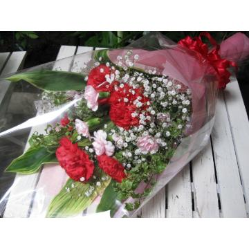 ☆大輪赤カーネーションの花束☆