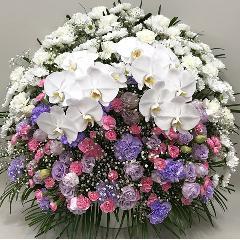 【供花】スフェアアレンジメントPP胡蝶蘭2本入(H75)
