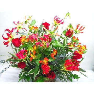 <フジテレビフラワーネット> グロリオサとバラの御祝アレンジメント画像