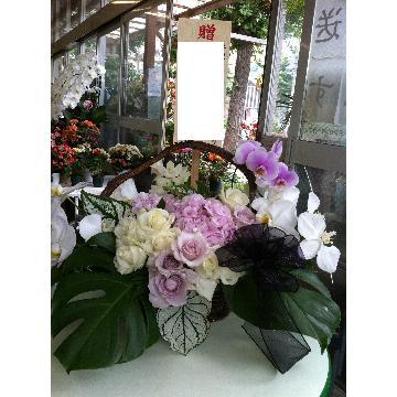 ¥13000 花束orアレンジor鉢花