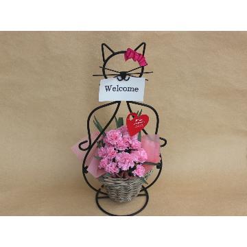 <フジテレビフラワーネット> 猫ちゃんR Plannts Pink メッセージ画像