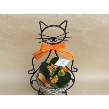 <フジテレビフラワーネット> 猫ちゃん 花鉢 Yellow Orange画像