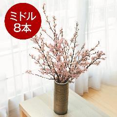 山形からの春便り啓翁桜