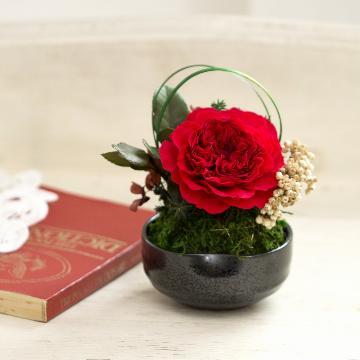 <フジテレビフラワーネット> 和プリザーブドフラワー「八重薔薇・紅赤」画像