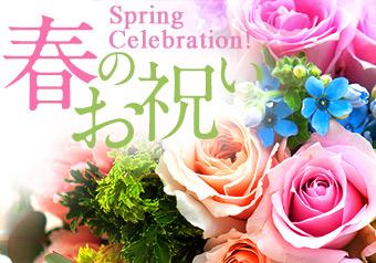 春のお祝い