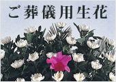 ご葬儀用生花